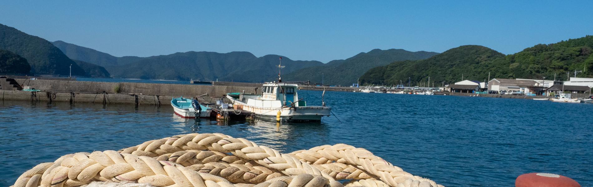 九州大分から新鮮な干物やお肉を全国にお届けいたします